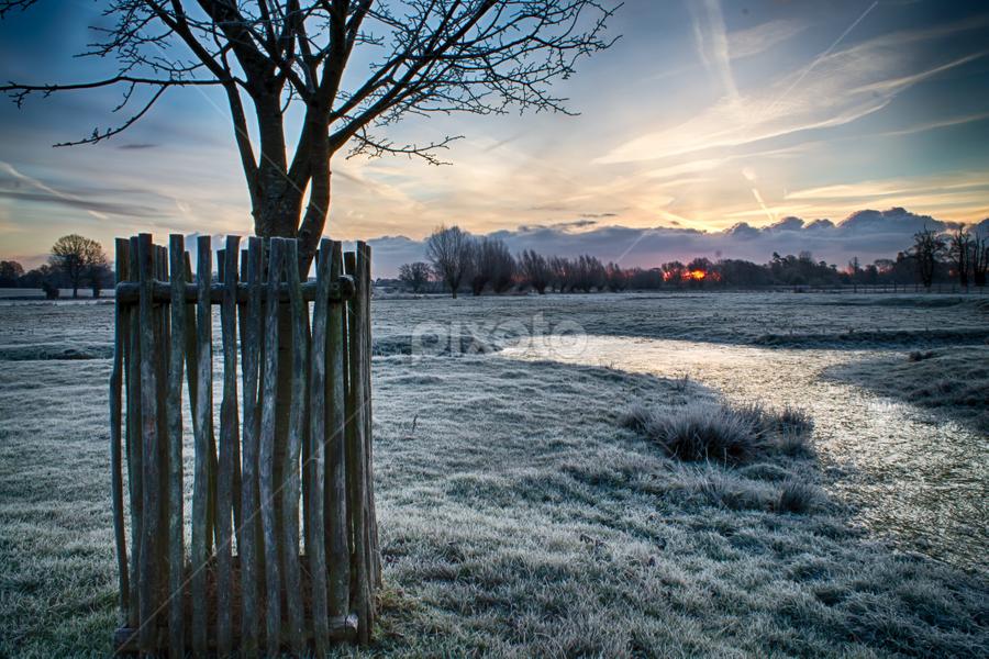 Frozen River by Darren Hanks - Landscapes Prairies, Meadows & Fields ( winter, darren hanks photography, frost, ashford, sunrise, landscape, great chart, river )