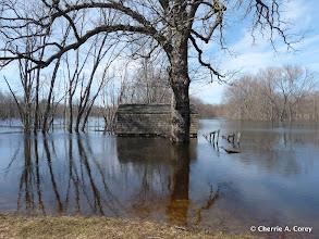Photo: Boat House, Old Manse 3.16.10
