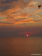 Photo: Day 96 - Sunrise #2
