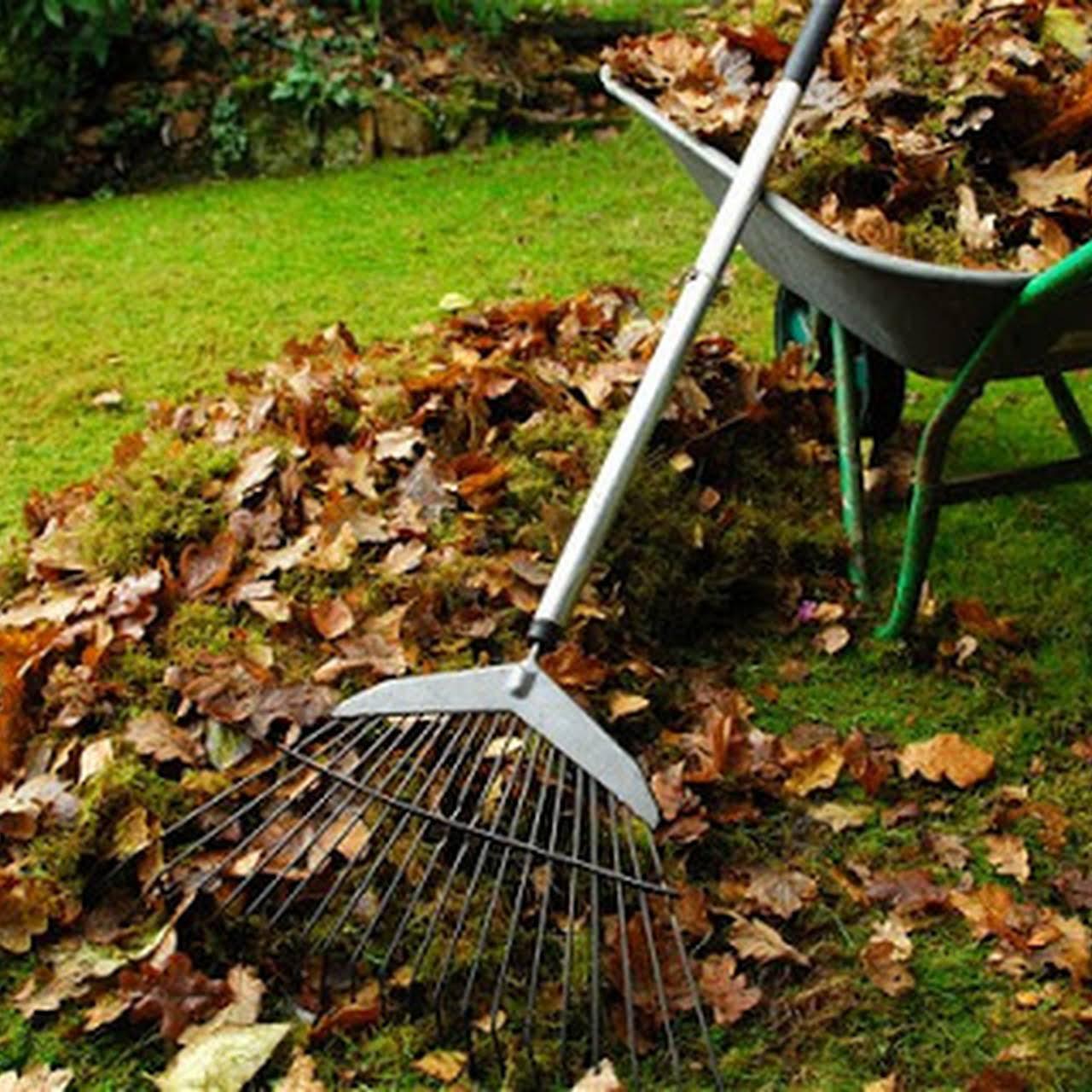 Northern Beaches Garden Maintenance - Gardener & Lawn Care Service ...