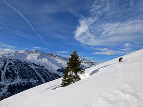 Photo: Albero solitario. Foto di Levi Simone