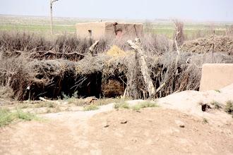 Photo: Day 159 - On the Desert Road to Hauz-Han