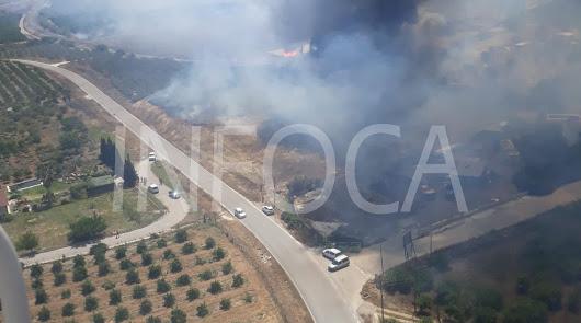 Infoca extingue un incendio forestal declarado en Tahal