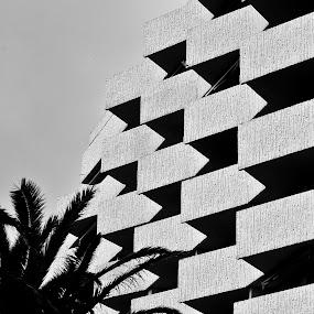 Hotel by Attila Kropf - Buildings & Architecture Architectural Detail ( palm, minimal, france, blackwhite, checked, Chiaroscuro, light, dark )