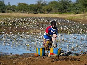 Photo: Wo Wasser ist, wird gewaschen.