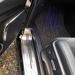 ヴェルファイア AGH30W Z-Gエディションのカスタム事例画像 黒ヴェーさんの2019年01月15日17:41の投稿