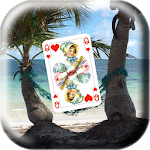 Solitaire Royal in palm Card game Icon