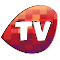 Pocket Tv : Mobile Tv,Web Tv icon