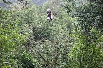 Photo: Tarzan-Swing!