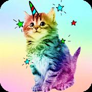 Tapety Na Kočky Aplikace Na Google Play