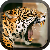 Leopard Live Wallpaper Android APK Download Free By Lux Live Wallpapers