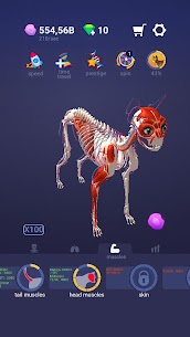 Idle Pet – Create cell by cell  Apk Download For Android and Iphone 7
