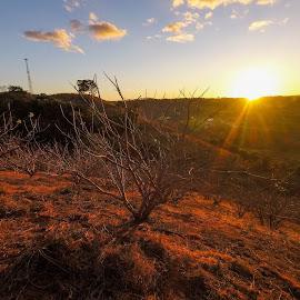 Jocote sunrise by Luis Albanes - Landscapes Mountains & Hills ( sunrise, el salvador, travel, turismo, jocote )