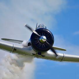 Zero Replica by Greg Harrison - Transportation Airplanes ( world war ii, quad city airshow, japanese zero, pearl harbor, air show )