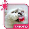 Cat Love Animated Keyboard icon