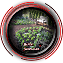 Kitchen Garden Design Ideas icon