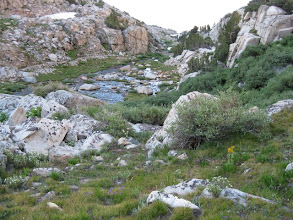 Photo: One of the little rock creek gardens along Sallie Keyes Creek S of Selden Pass.