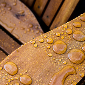 Wet Adirondack by Andrew Brinkman - Artistic Objects Furniture ( water, water resistant, wood, adirondack, object, furniture, stain, chair, color, deck furniture, drops, rain drops, rain )