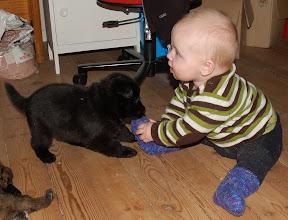 Photo: Sebastian og sort jente 4 uker og 2 dager