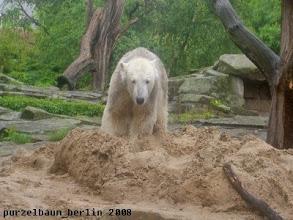 Photo: Zurueck zum Sandhaufen ;-)