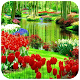 Download Garden Wallpapers For PC Windows and Mac