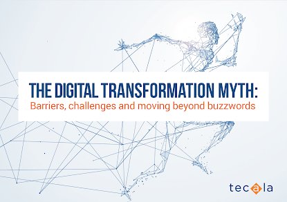 Barriers, Challenges and Moving Beyond Buzzwords in Digital Transformation (DX)