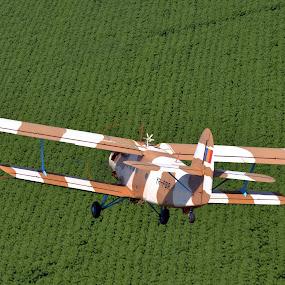 Antonov AN-2 by Rafael Raf - Transportation Airplanes ( air to air, antonov, airplane, romania, constanta, nikon )