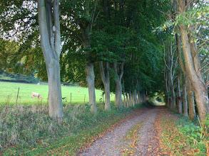 Photo: Chemin d'Imbleval à la hauteur du château de Pontrancart