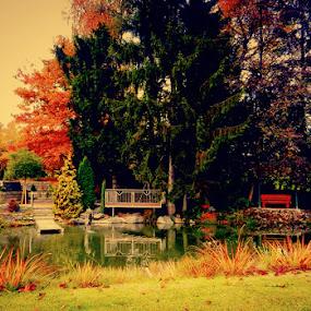 City Park by Nat Bolfan-Stosic - City,  Street & Park  City Parks ( park, bright, colors, lake, city )