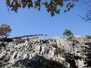 亀岩へ登る