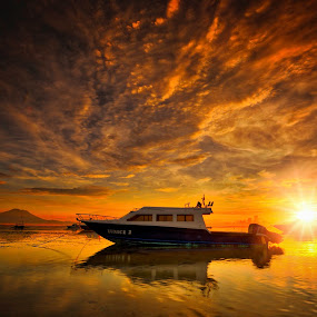Yellow Morning by Max Bowen - Landscapes Sunsets & Sunrises (  )
