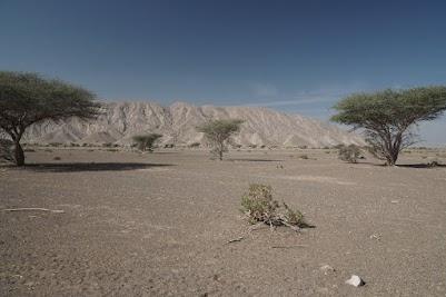 Der Jabal Madar erhebt sich 300 m über die Ebene