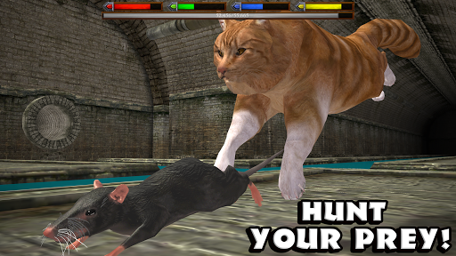 PC u7528 Ultimate Cat Simulator 2