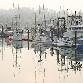 by Tammy Cassford - Transportation Boats