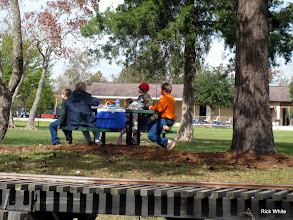 Photo: Lunch at a picnic table under a pine tree.   2009-1127 HALS Anniversary Meet