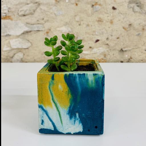 pot en béton marbré coloré bleu pétrole  et jaune avec succulente