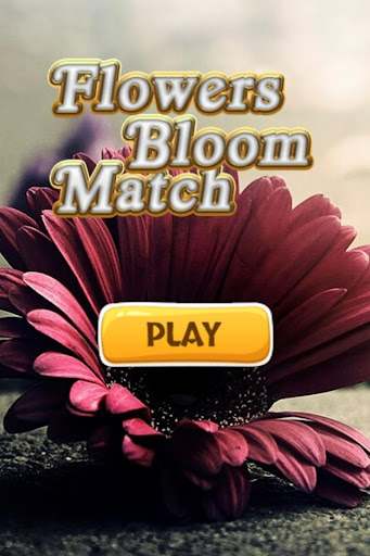 Flowers Bloom Match