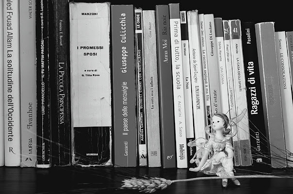 collezione libri di gianniturtur