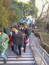 Photo: Visitors packed the Hidden Garden Steps (16th Avenue, between Kirkham and Lawton streets in San Francisco's Inner Sunset District) during the opening celebration (Saturday, December 7, 2013).  For more information about the Steps, please visit our website (http://hiddengardensteps.org), view links about the project from our Scoopit! site (http://www.scoop.it/t/hidden-garden-steps), or follow our social media presence on Twitter (https://twitter.com/GardenSteps), Facebook (https://www.facebook.com/pages/Hidden-Garden-Steps/288064457924739) and many others.