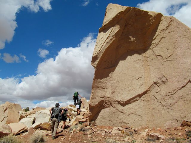 Huge fallen boulder
