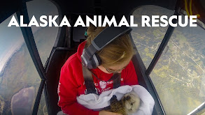Alaska Animal Rescue thumbnail