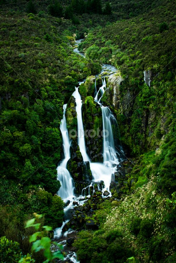 Waipunga falls New Zealand by Santhosh Pereparambil - Landscapes Waterscapes ( nikon 70 200 vr, waterfalls, nikon d750, new zealand )