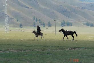 Photo: Kazakh cowboy