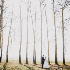 Wedding photographer Olga Goloviznina (goloviznina). Photo of 03.11.2015