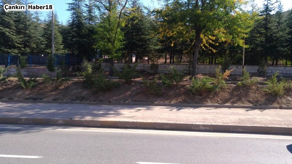 Çankırı belediyesi- haber18 - çankırı - belediye -