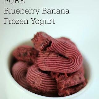 Big Boss Swirlio | Pure Blueberry Banana Frozen Yogurt {Recipe}