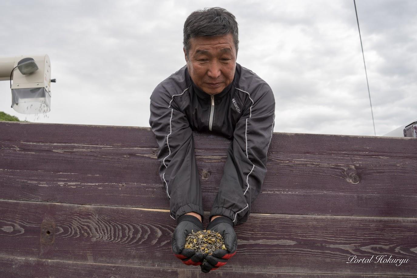 北竜町畑作生産組合・藤井二郎 組合長が種の状態を確認