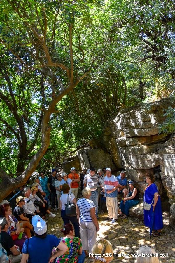 Гид в Израиле Светлана Фиалкова на экскурсии у пещеры Рашби- Рабби Шимон Бар Йохай в Пкиине.
