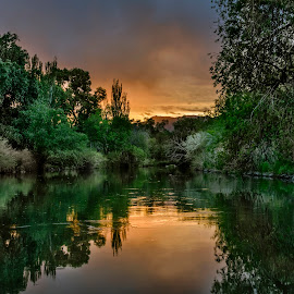 Jordan River Sunset by Brandon Montrone - Landscapes Sunsets & Sunrises ( outdoor, forest, green, reflection, nature, sunset, river, trees, water, colorful, landscape )