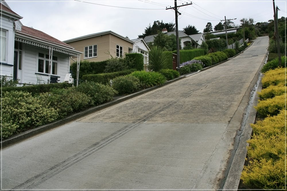 Baldwin Street, considerada a rua mais inclinada do mundo